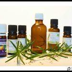 france-huile-pour-dos-ivan-olivier-photographie-10