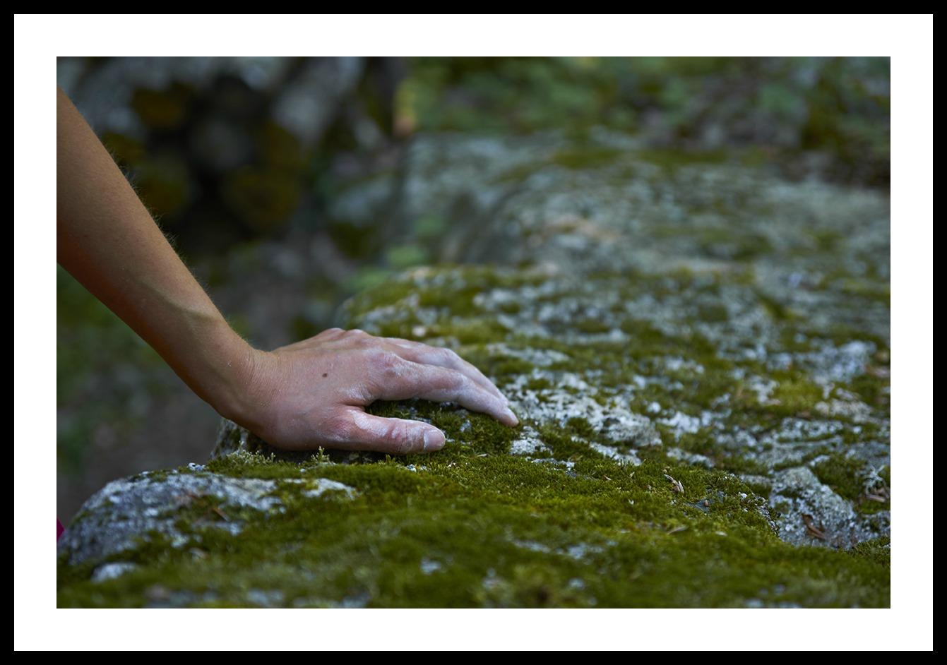 grimpeurs-cueilleurs-ivan-olivier-photographies