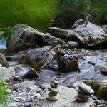 La tribu des Grimpeurs Cueilleurs: astuces naturelles