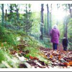 Petit Bonheur #5 – Un nouveau souffle