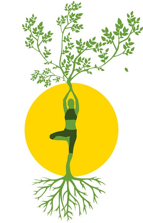 GC- corps humain - pixabay DGRA