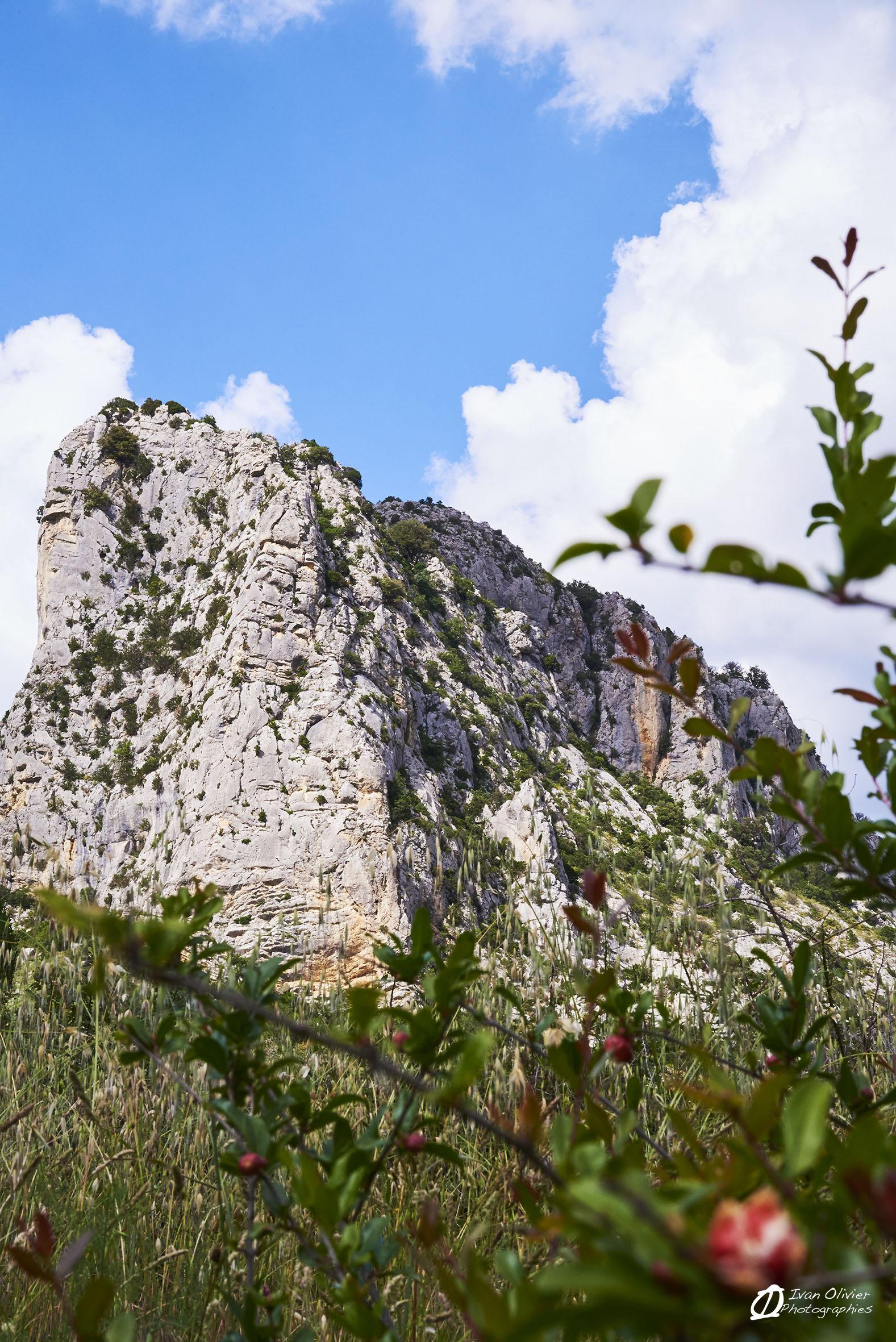 France - falaise de St Jean de Buèges © Ivan Olivier Photographie (2)