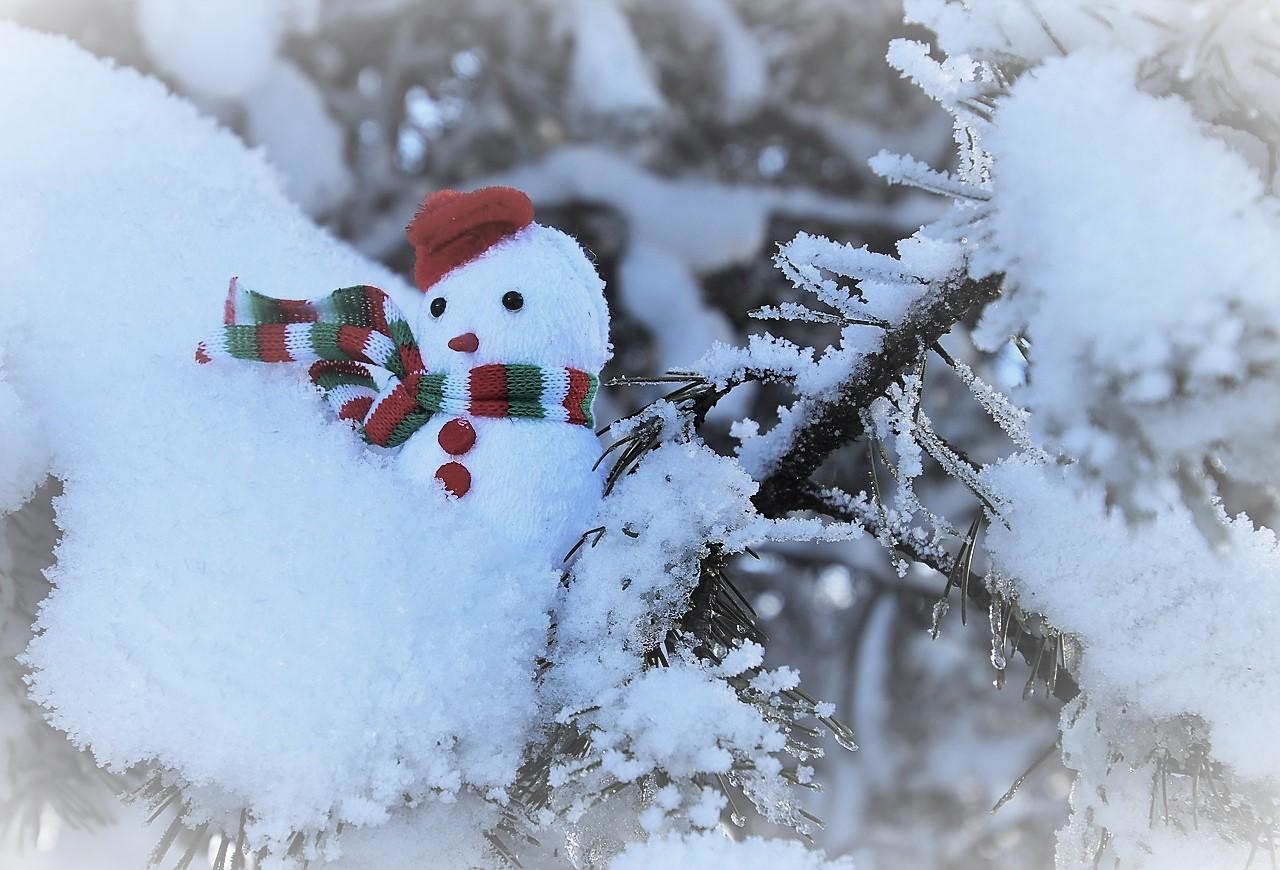 GC - angine amygdalite - bonhomme de neige - pixabay