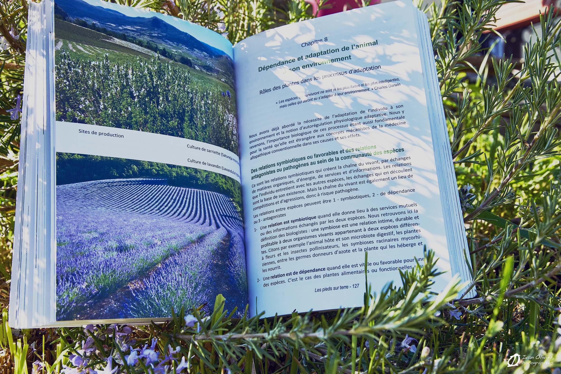 livre GC les pieds sur terre - Ivan Olivier Photographies© France (7)