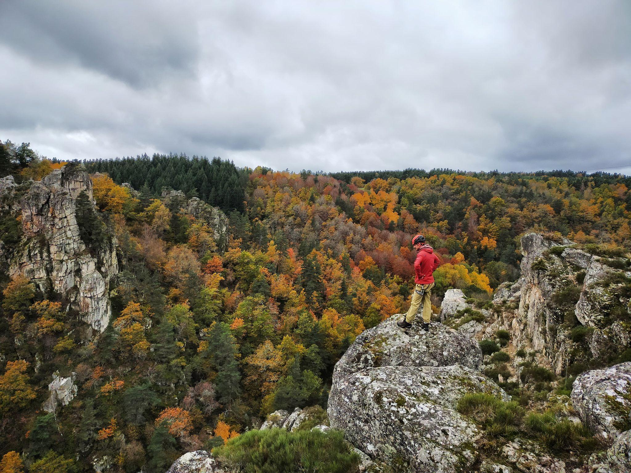 GC- Chataignier - castanea sativa - couleurs automne - gorges de la truyere lozere automne 2020 2