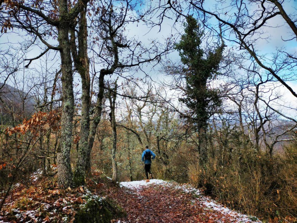 30/12/20 - Il faudra revenir avec les feuillages vert tendre du printemps!