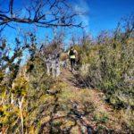 Trail 23km – Trail de la Courbière en off – Haute Ariège